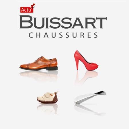 Logo représentant Buissart c. sarl - repar-vit