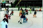 Logo représentant L'a2d - patinoire municipale de dunkerque