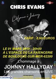 Image illustrant Concert : Hommage à Johnny