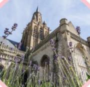 Image illustrant Notre-Dame en Fête