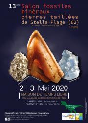 Image illustrant Salon Fossiles Minéraux Pierres Taillées