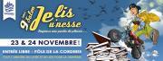 """Image illustrant Salon du livre et du jeu """"Je lis Jeu'nesse"""""""