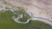 Vivre la grande marée en baie d'Authie