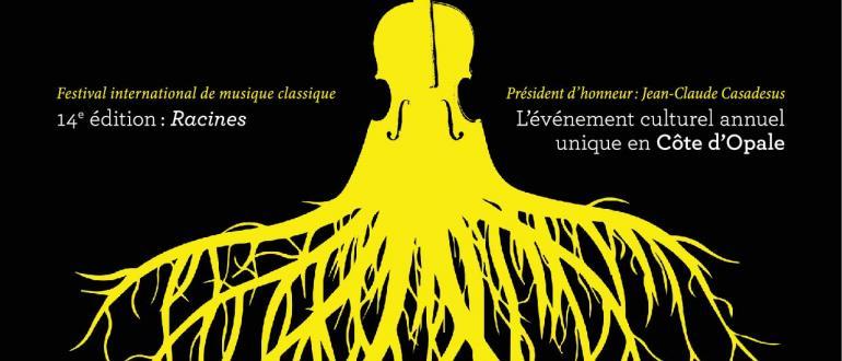 Visuel pour festival musica nigella