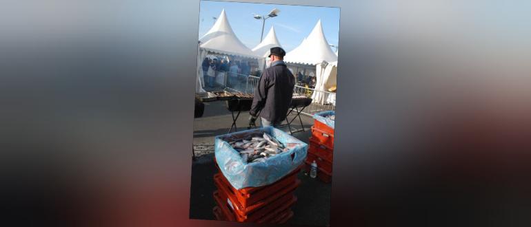 Visuel pour fête du hareng - boulogne sur mer